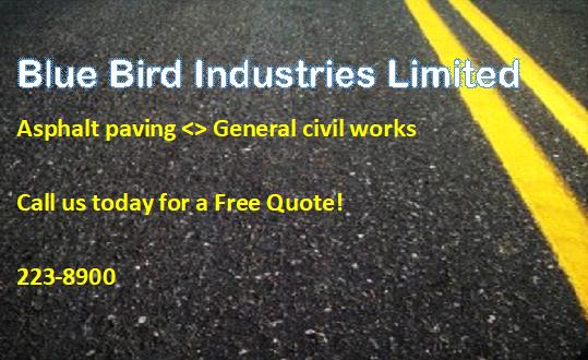 Blue Bird Industries Limited