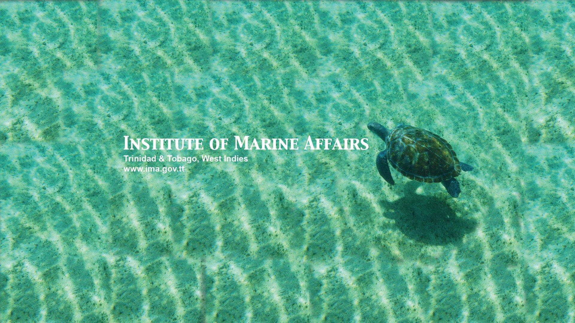 Institute of Marine Affairs